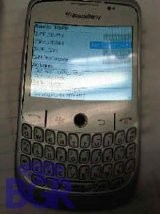 blackberry-gemini-8325-1