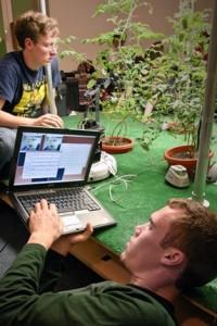 mit-robot-garden-plants