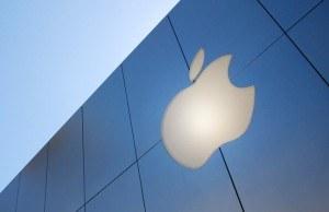 apple-bina-logo