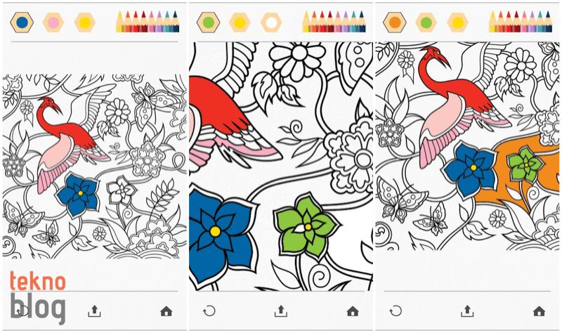 colorfy-002