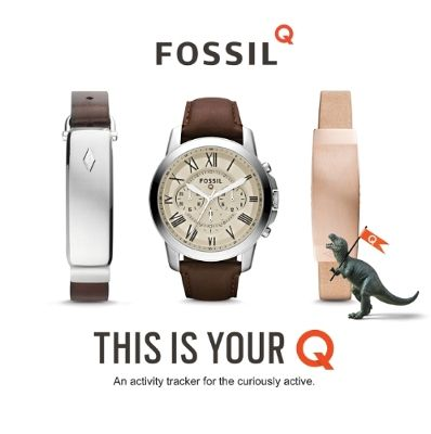 fossil-q-221015