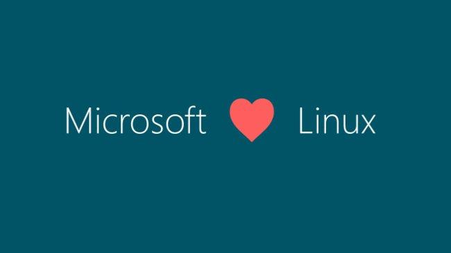 microsoft linux açık kaynak