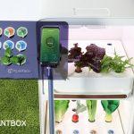 samsung c-lab plantbox