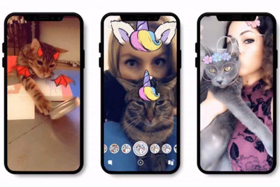 snapchat kedi filtreleri