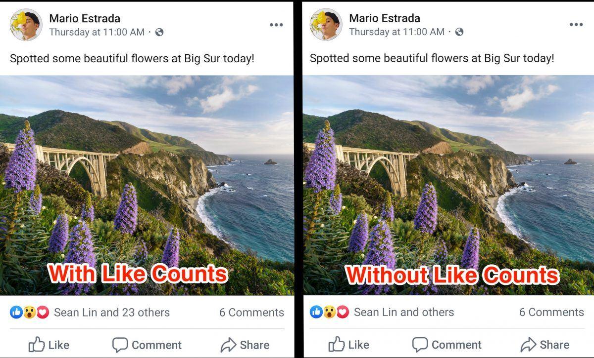 facebook beğeni sayısı