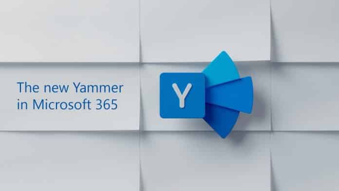 microsoft yammer video