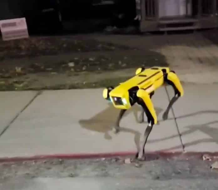 Boston dynamics robot spot