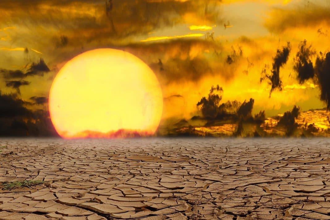 dünya küresel ısınma